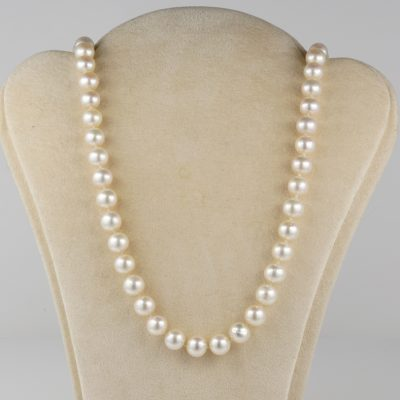 Charming Single Strand of Cultured Pearl Necklace